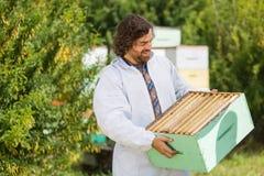 Μελισσοκόμος που εξετάζει το σύνολο κλουβιών των κηρηθρών Στοκ εικόνες με δικαίωμα ελεύθερης χρήσης