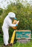 Μελισσοκόμος που εργάζεται στο μελισσουργείο του Στοκ φωτογραφία με δικαίωμα ελεύθερης χρήσης