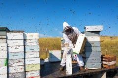 Μελισσοκόμος που περιβάλλεται από τις μέλισσες Στοκ φωτογραφία με δικαίωμα ελεύθερης χρήσης