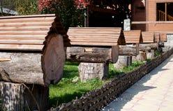 Μελισσουργείο άγριος-κυψελών στην Αμπχαζία Στοκ Εικόνα