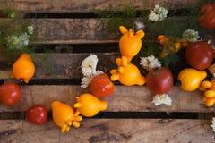 Μελιτζάνα με την ντομάτα κίτρινη Στοκ φωτογραφίες με δικαίωμα ελεύθερης χρήσης
