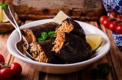 Μελιτζάνα που γεμίζεται με το κρέας και το ρύζι στο κύπελλο στο ξύλινο υπόβαθρο Εκλεκτική εστίαση Αραβική κουζίνα Στοκ Εικόνες
