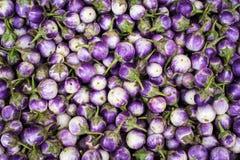 Μελιτζάνες στην ασιατική αγορά Υπόβαθρο οργανικής τροφής Στοκ Εικόνες
