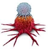 Με κύτταρο Τ να επιτεθεί όγκος καρκίνου διανυσματική απεικόνιση