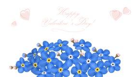 Με ξεχάστε μη τρυφερά μπλε λουλούδια άνοιξη Στοκ φωτογραφία με δικαίωμα ελεύθερης χρήσης