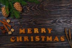 Μελοψώματα για τα νέα έτη και τα Χριστούγεννα Στοκ Φωτογραφία