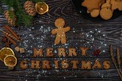 Μελοψώματα για τα νέα έτη και τα Χριστούγεννα Στοκ Εικόνες