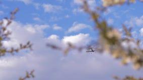 Με πάρτε μακριά, το μικρό παιδί αυξάνει τα χέρια μέχρι το αεροπλάνο που πετά στο σαφή μπλε ουρανό απόθεμα βίντεο