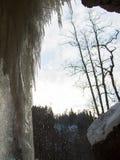 Με τα παγάκια είναι μειωμένες πτώσεις Στοκ εικόνα με δικαίωμα ελεύθερης χρήσης