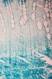 Με τη μέθοδο του καμβίου μικροσκόπιο παρατήρησης κυττάρων Στοκ Φωτογραφία