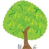 Με το δέντρο αχλαδιών Στοκ εικόνες με δικαίωμα ελεύθερης χρήσης