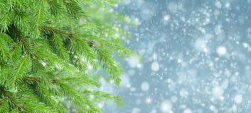 Με το δέντρο και το χιόνι έλατου Στοκ φωτογραφία με δικαίωμα ελεύθερης χρήσης