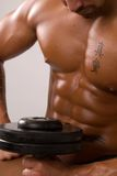 με υπερτροφικούς ανελαστικούς μυς στοκ φωτογραφία