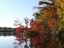 Με χρωματίστε φθινόπωρο Στοκ Εικόνα