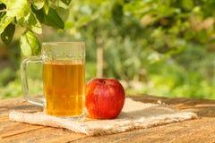 Μηλίτης της Apple goblet γυαλιού και φρέσκο κόκκινο μήλο στους ξύλινους πίνακες Στοκ Εικόνες