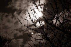Μηνιαίος ουρανός βραδιού Στοκ φωτογραφία με δικαίωμα ελεύθερης χρήσης