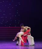 Μην λάβετε υπόψη τον ασφάλεια-όμορφο βασιλιάς-κινεζικό λαϊκό χορό πιθήκων κάποιου Στοκ Εικόνες