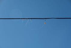Μην πετάξτε κάτω από τα ηλεκτροφόρα καλώδια Στοκ φωτογραφίες με δικαίωμα ελεύθερης χρήσης