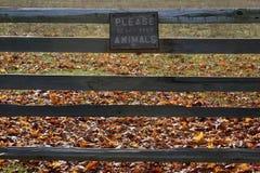 Μην ταΐστε το σημάδι ζώων Στοκ εικόνα με δικαίωμα ελεύθερης χρήσης