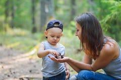 Μητέρα και αυτή λίγος γιος που ανακαλύπτει τη φύση που κοιτάζει στους κώνους πεύκο-δέντρων Στοκ Φωτογραφίες