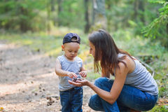 Μητέρα και αυτή λίγος γιος που ανακαλύπτει τη φύση που κοιτάζει στους κώνους πεύκο-δέντρων Στοκ φωτογραφία με δικαίωμα ελεύθερης χρήσης