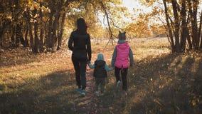 Μητέρα και δύο παιδιά περπατάνε στο πάρκο και απολαμβάνουν την όμορφη φθινοπωρινή φύση Χαρούμενη οικογένεια σε φθινοπωρινή βόλτα απόθεμα βίντεο