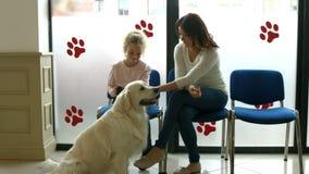 Μητέρα και κόρη με το σκυλί στη αίθουσα αναμονής κτηνιάτρων απόθεμα βίντεο