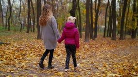 Μητέρα και κόρη που απολαμβάνουν τη ζωηρόχρωμη φύση φθινοπώρου απόθεμα βίντεο