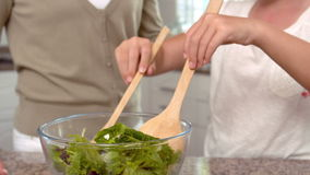 Μητέρα και κόρη που προετοιμάζουν τη σαλάτα από κοινού απόθεμα βίντεο