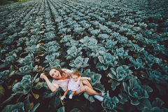 Μητέρα και κόρη στον τομέα με το λάχανο στοκ εικόνες