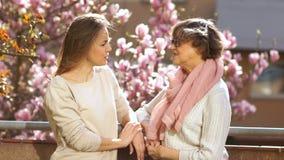 Μητέρα και κόρη συνομιλίας Δύο γυναίκες στέκονται στο μπαλκόνι ο ένας εναντίον του άλλου και διοργανώνουν την ομιλία διασκέδασης  απόθεμα βίντεο