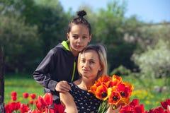 Μητέρα με δύο γιους στον κόκκινο τομέα τουλιπών Στοκ Φωτογραφίες