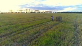Μητέρα με το αγκάλιασμα κορών και να περιβάλει στον αγροτικό τομέα στο ηλιοβασίλεμα απόθεμα βίντεο