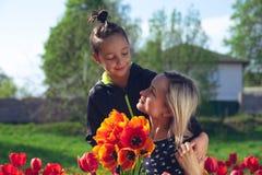 Μητέρα με το γιο στον κόκκινο τομέα τουλιπών Στοκ εικόνα με δικαίωμα ελεύθερης χρήσης