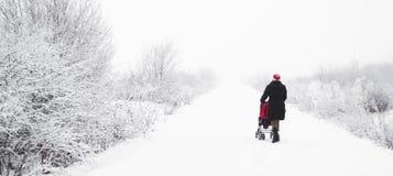 Μητέρα με το καροτσάκι στο wintertime Στοκ Φωτογραφία