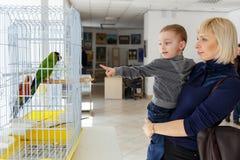 Μητέρα με το παιδί Στοκ εικόνες με δικαίωμα ελεύθερης χρήσης