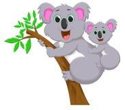 μητέρα koala μωρών ελεύθερη απεικόνιση δικαιώματος