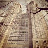 Μητροπολιτικό κυβερνητικό κτήριο του Τόκιο Στοκ Εικόνες