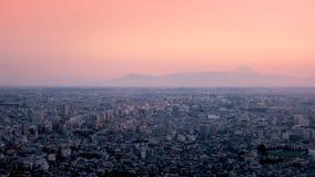 Μητρόπολη της πόλης του Τόκιο με μια άποψη του Φούτζι SAN στοκ εικόνα