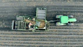 Μηχανήματα γεωργίας, εναέρια άποψη Άνθρωποι που εργάζονται με τις πατάτες στο ρυμουλκό ενός τρακτέρ απόθεμα βίντεο