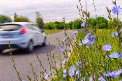 Μηχανή στην εθνική οδό με τα λουλούδια Στοκ φωτογραφία με δικαίωμα ελεύθερης χρήσης