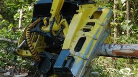 Μηχανικός πριονίζοντας έναν πρόσφατα τεμαχισμένο κορμό δέντρων απόθεμα βίντεο