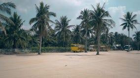 Μηχανικό δίκυκλο γύρου τύπων κοριτσιών στο τετράγωνο ενάντια στα τροπικά δέντρα φιλμ μικρού μήκους