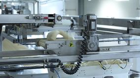 Μηχανοποιημένη παραγωγή των προϊόντων αρτοποιίας απόθεμα βίντεο