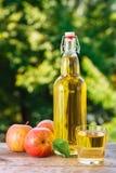 Μηλίτης ή χυμός της Apple Στοκ Φωτογραφία