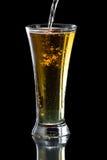 Μηλίτης της Apple, μπύρα Στοκ Φωτογραφίες