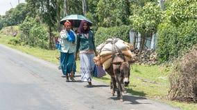 Μη αναγνωρισμένοι αιθιοπικοί άνθρωποι που περπατούν κατά μήκος του δρόμου Οι άνθρωποι στην Αιθιοπία υποφέρουν της ένδειας λόγω τη Στοκ Εικόνες