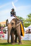 Μη αναγνωρισμένο mahout Παιχνίδια πόλο ελεφάντων κατά τη διάρκεια της αντιστοιχίας πόλο ελεφάντων φλυτζανιών βασιλιάδων «s του 20 Στοκ εικόνα με δικαίωμα ελεύθερης χρήσης