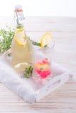 Μη αλκοολούχο ποτό Στοκ εικόνες με δικαίωμα ελεύθερης χρήσης