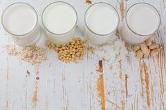 Μη γαλακτοκομικές εναλλακτικές λύσεις γάλακτος Στοκ φωτογραφίες με δικαίωμα ελεύθερης χρήσης